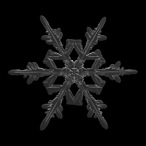snowflake final report
